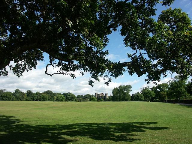 parken in Dublin