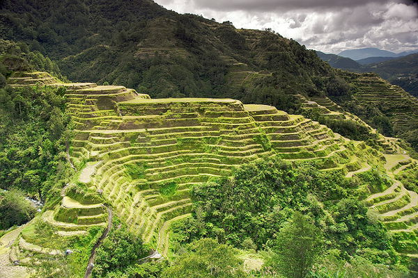 rijstterrassen fillipijnen