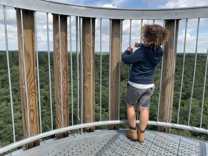 Op vakantie in Brabant. Uitzicht over de bossen.